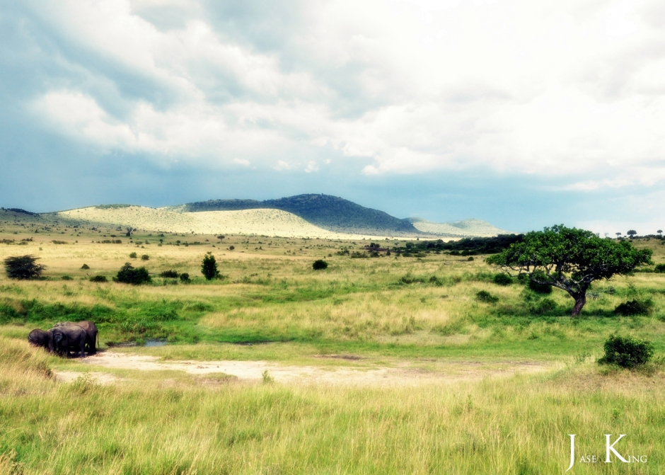 The Maasai and the The Maasai Mara.